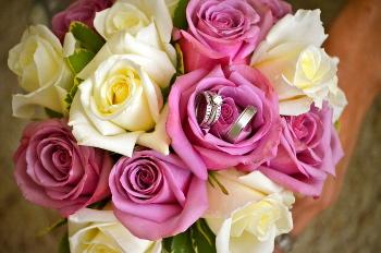 Wedding rings in roses at Little Elm, TX wedding