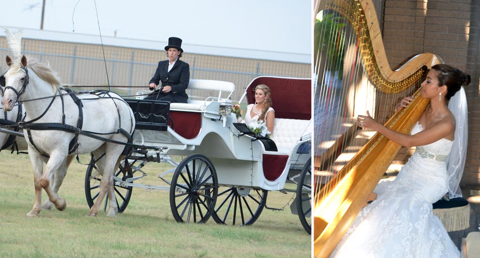 Bride being taken to wedding in horse drawn carriage, bride playing harp